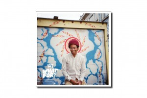 Album Review #17 Toro Y Moi What's For