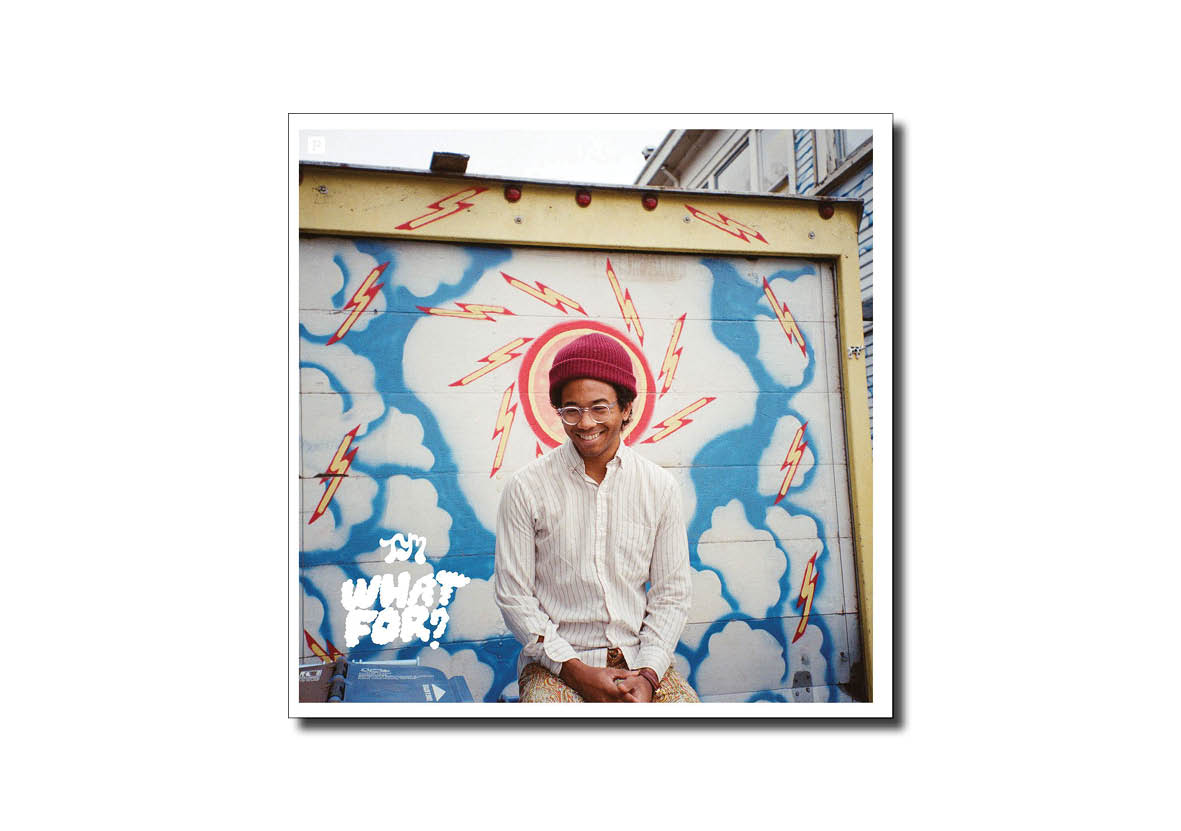 Album Review 17 Toro Y Moi What's For